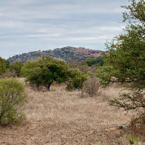 Pontotoc Texas Land for Sale