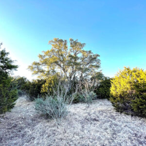 Land for sale Menard County